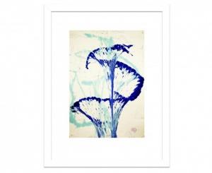 2_Blaue-Blüte