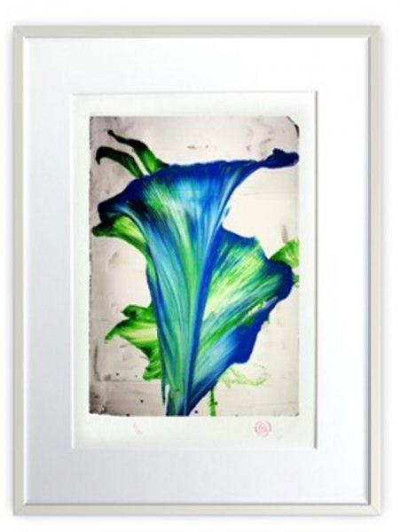 Blaue-Blumen-1